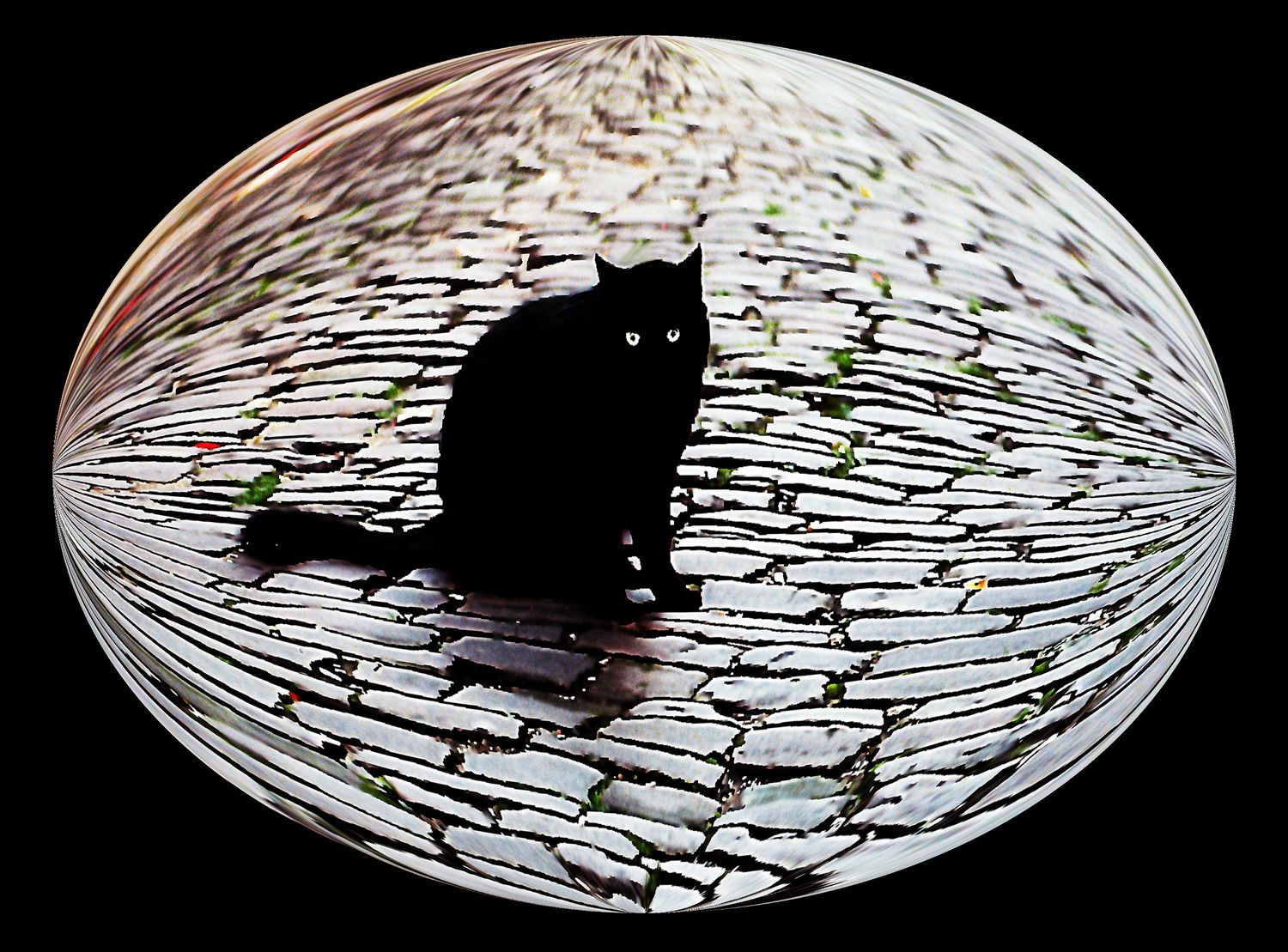 - A cat in Cordes sur Ciel represents all of the cats in France -  Tony Karp's Bubble Pictures - From 1959 to 2013 - Tony Karp, design, art, photography, techno-impressionist, techno-impressionism, aerial photography , drone , drones , dji , mavic pro , video , 3D printing - Books -