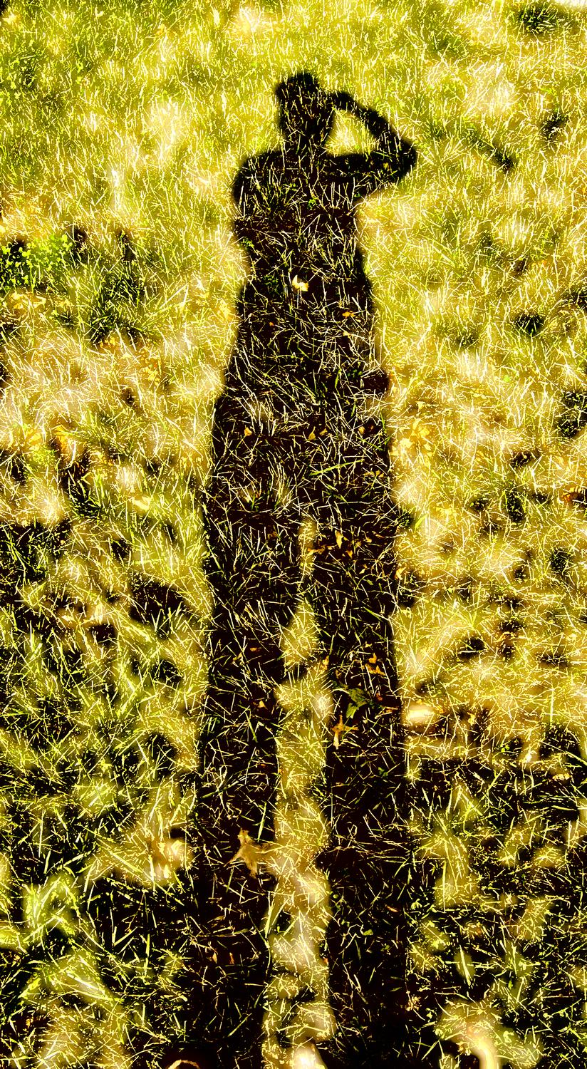 silhouette of the artist - Me on grass - Kodak Easyshare P880 - Tony Karp, design, art, photography, techno-impressionist, techno-impressionism, aerial photography , drone , drones , dji , mavic pro , video , 3D printing - Books -