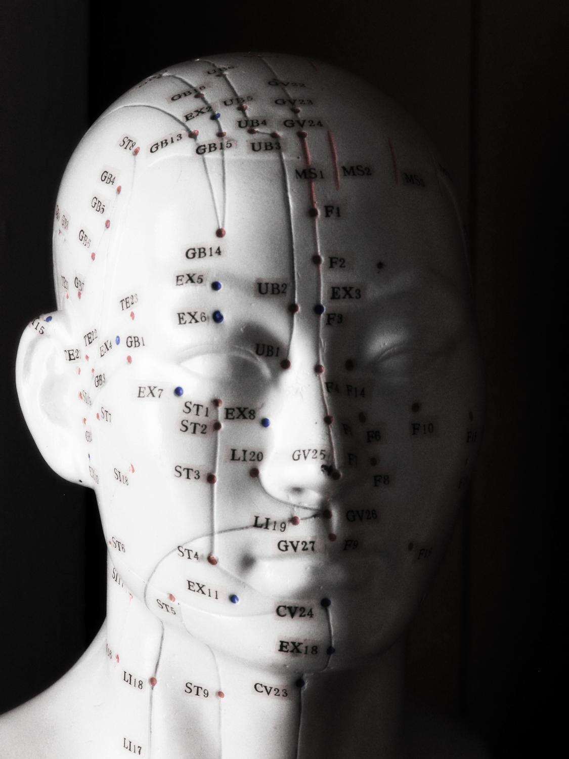 Acupuncture head - Portrait of Pinhead - Kodak Easyshare P880 - Tony Karp, design, art, photography, techno-impressionist, techno-impressionism, aerial photography , drone , drones , dji , mavic pro , video , 3D printing - Books -