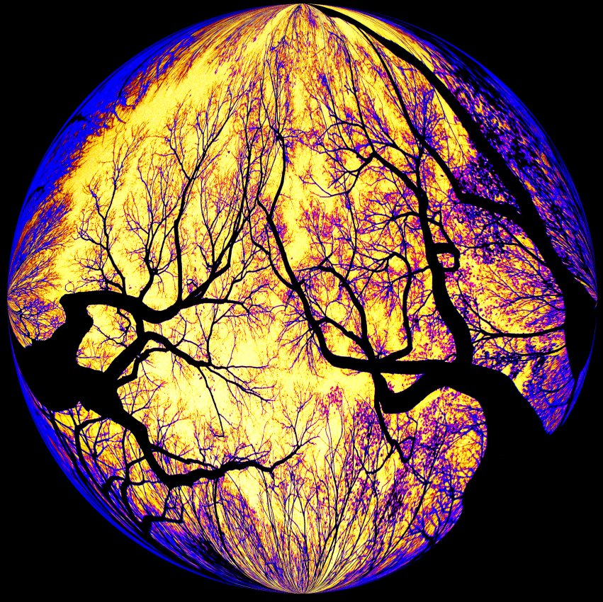The Strawbs used this on an album cover - - Haunted trees inside a bubble -  Tony Karp's Bubble Pictures - From 1959 to 2013 - Tony Karp, design, art, photography, techno-impressionist, techno-impressionism, aerial photography , drone , drones , dji , mavic pro , video , 3D printing - Books -