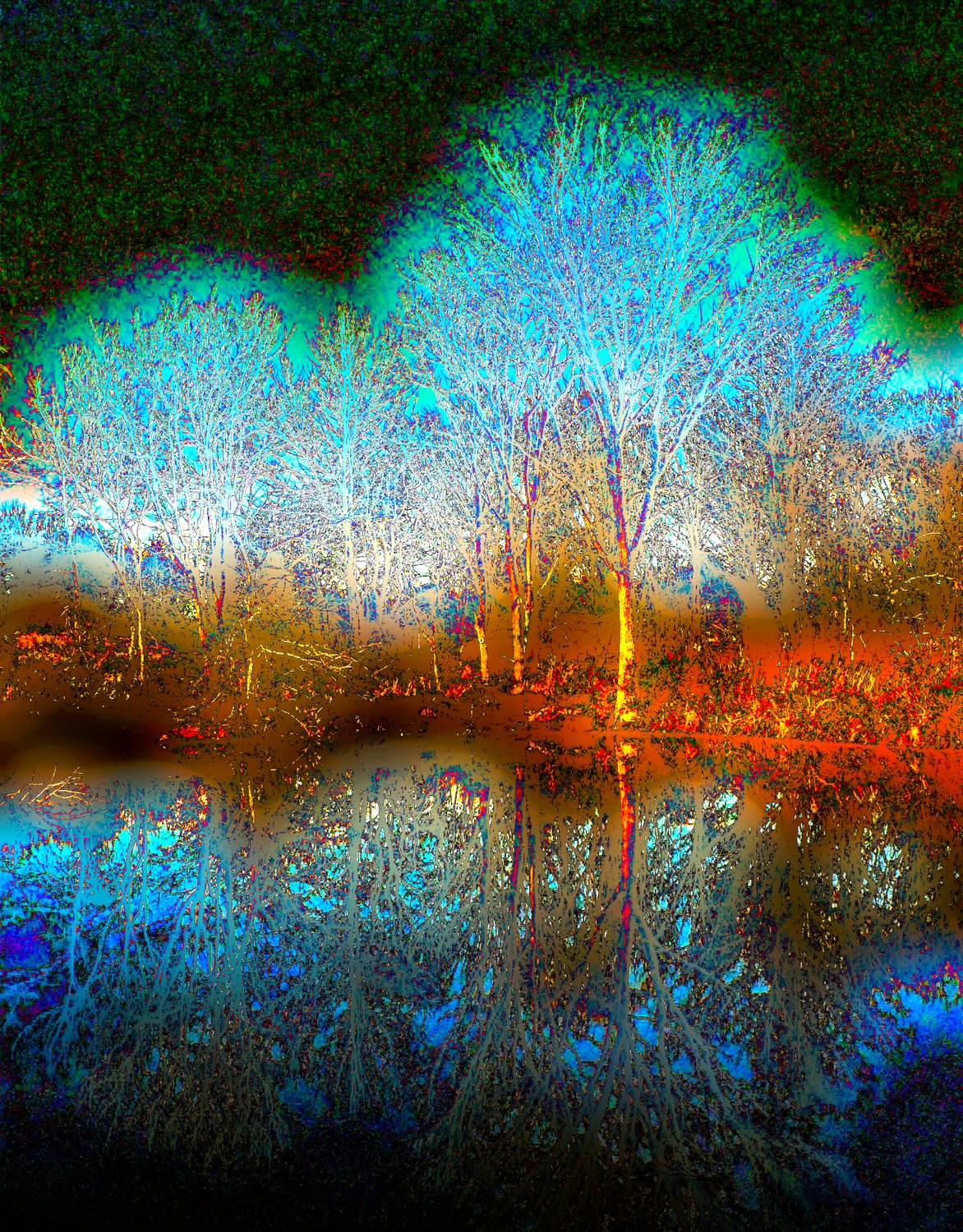 Glowing tree reflected in water #2 - - Fiddling with the colors - Ida Lee Park, Leesburg Virginia - Panasonic DMC-FZ5 - Tony Karp, design, art, photography, techno-impressionist, techno-impressionism, aerial photography , drone , drones , dji , mavic pro , video , 3D printing - Books -