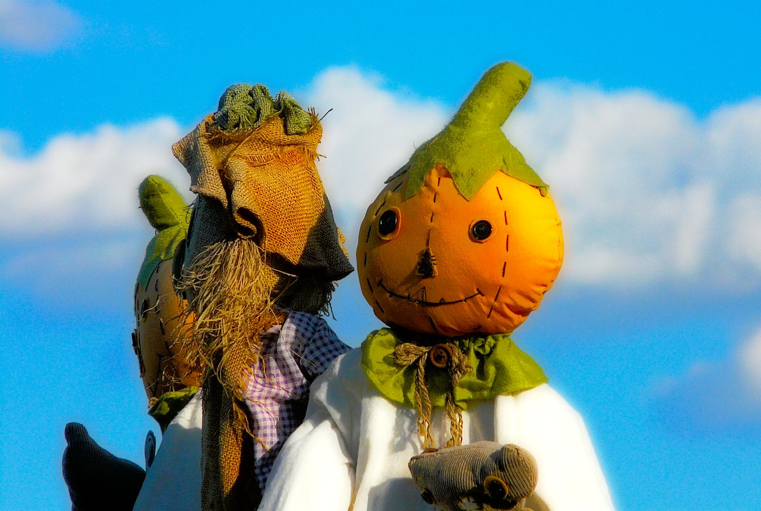 fantastical shot of a pumpkin scarecrow, with friends, like something from The Wizard of OZ - Mr. Pumpkin's fantasy - Panasonic DMC-FZ18 - Tony Karp, design, art, photography, techno-impressionist, techno-impressionism, aerial photography , drone , drones , dji , mavic pro , video , 3D printing - Books -