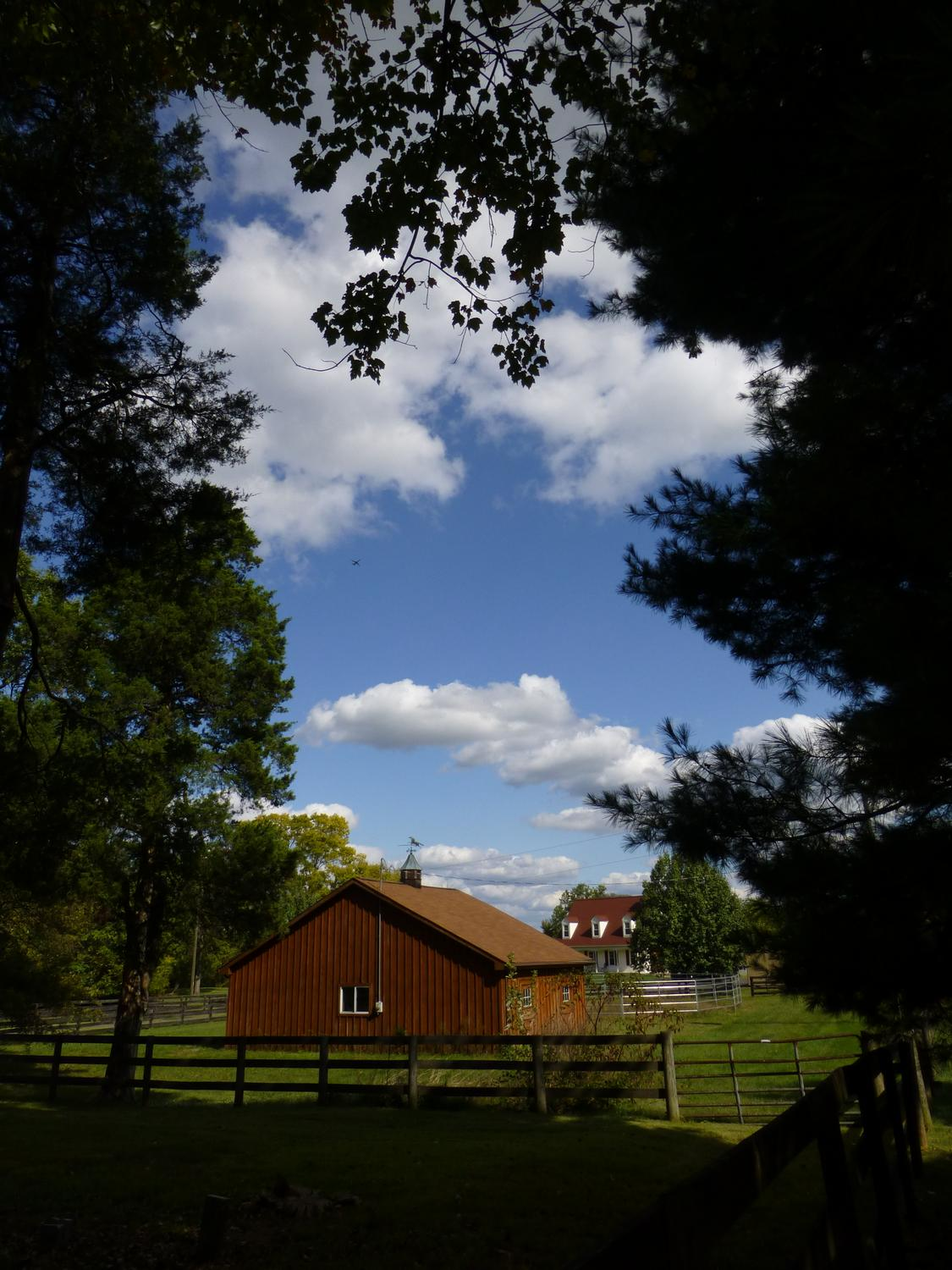 - A horse farm along our road <br>--- Click to see ORIGINAL --- - Panasonic DMC-ZS20 - - art  - photography - by Tony Karp