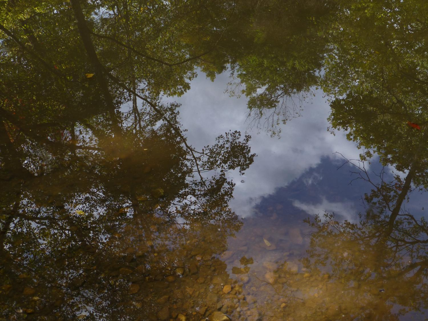- Reflections on the stream <br>--- Click to see ORIGINAL --- - Panasonic DMC-ZS20 - - art  - photography - by Tony Karp