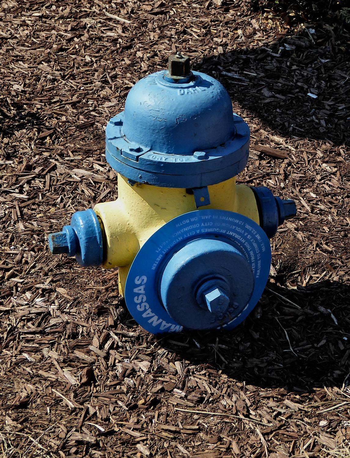 - This cute little fireplug has a tag telling where to return it in case it gets lost. - Manassas Virginia, Panasonic DMC-ZS40 - Tony Karp, design, art, photography, techno-impressionist, techno-impressionism, aerial photography , drone , drones , dji , mavic pro , video , 3D printing - Books -